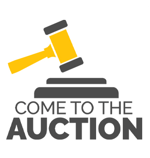 Come to the Auction